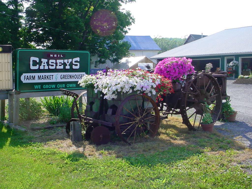Neil Casey's Farm Market