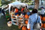 Cortland Pumpkinfest