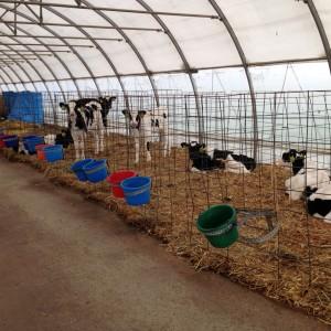 Tompkins County Farm City Day