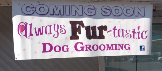 Dog Grooming Cortland Ny
