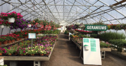 Neil Casey's Farm Market & Greenhouses