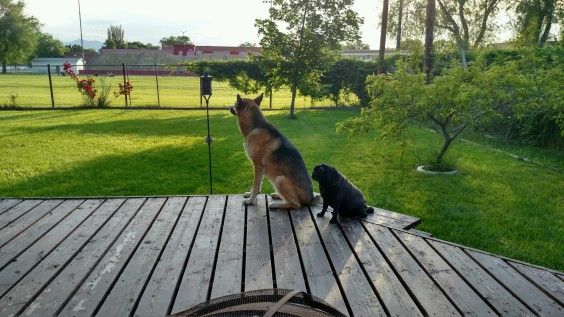 Maeby & Penny