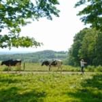 Jerry Dell Farm