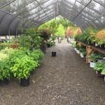 Valley View Gardens