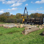 Thayer Logging